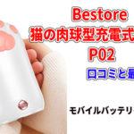 Bestore 猫の肉球型充電式カイロP02の口コミと最安値!モバイルバッテリー機能付き