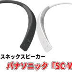 パナソニックSC-WN10とソニーSRS-NB10の違いを比較おすすめは?